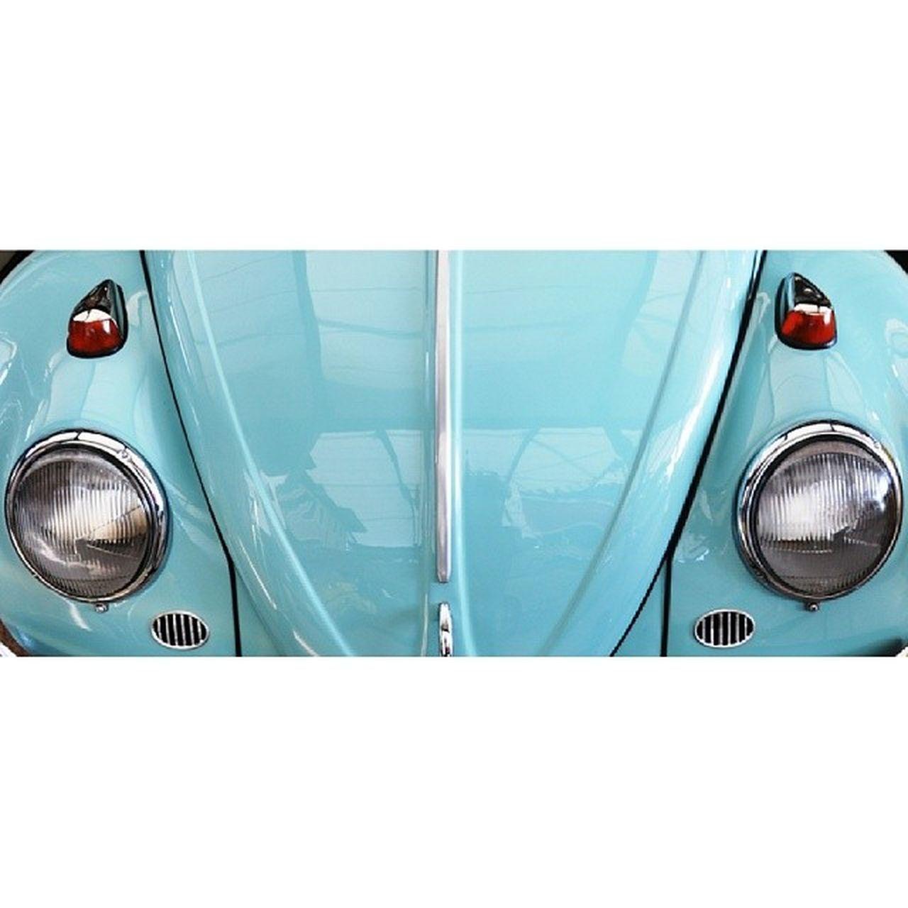 Beetle Turkuaz Car Cute smile