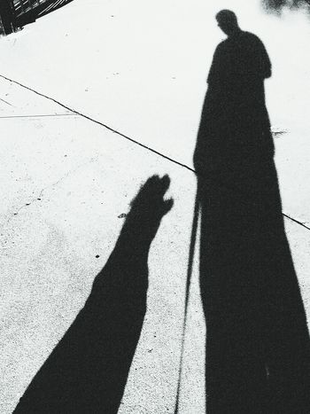 Shadow Art. Taking Photos That's Me Check This Out Photography Quality Time B&w Dog Art Friends Friendsforlife