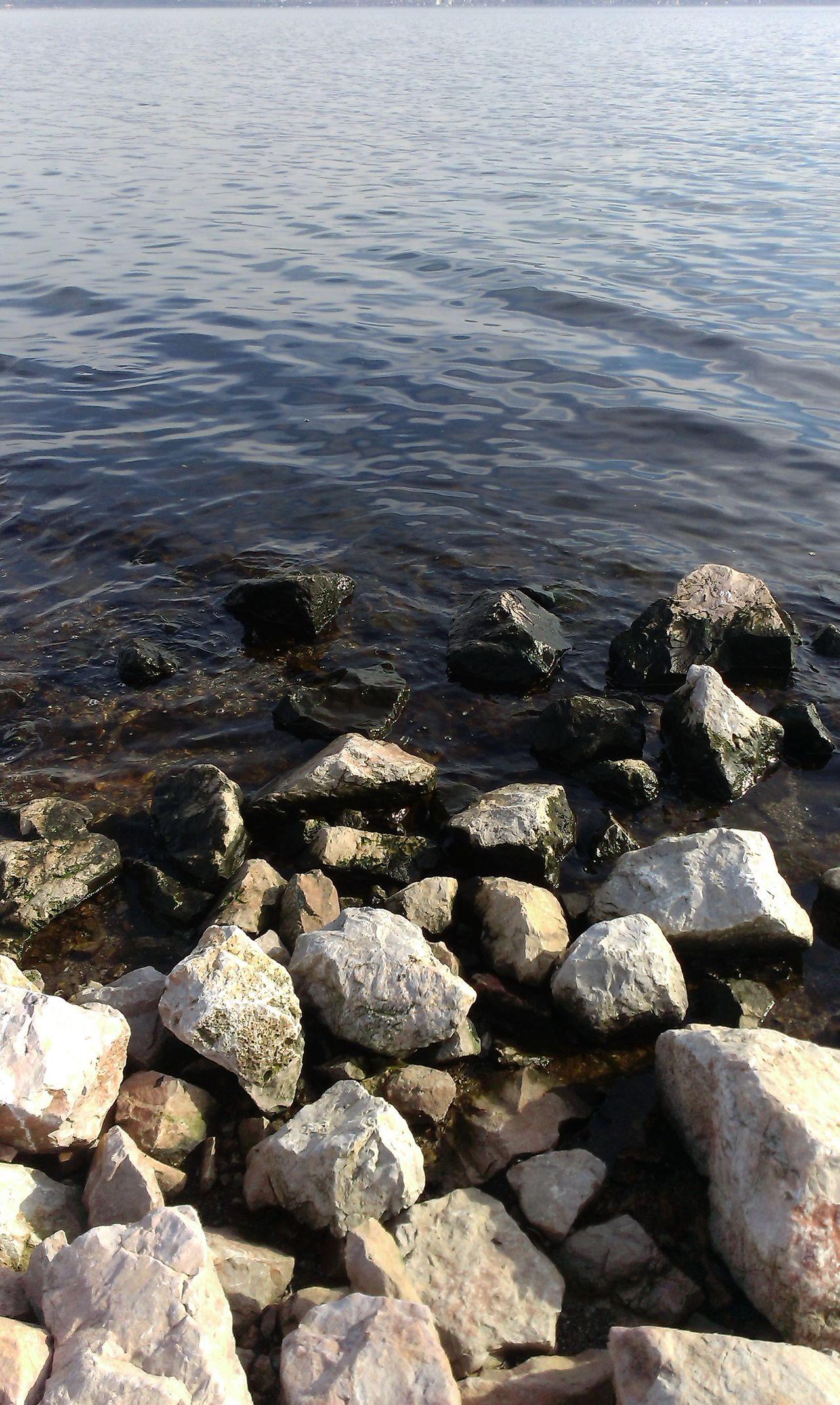 #coaster #sea #seaweedsalad #turkey#kocaeli #varioouscolorsstones