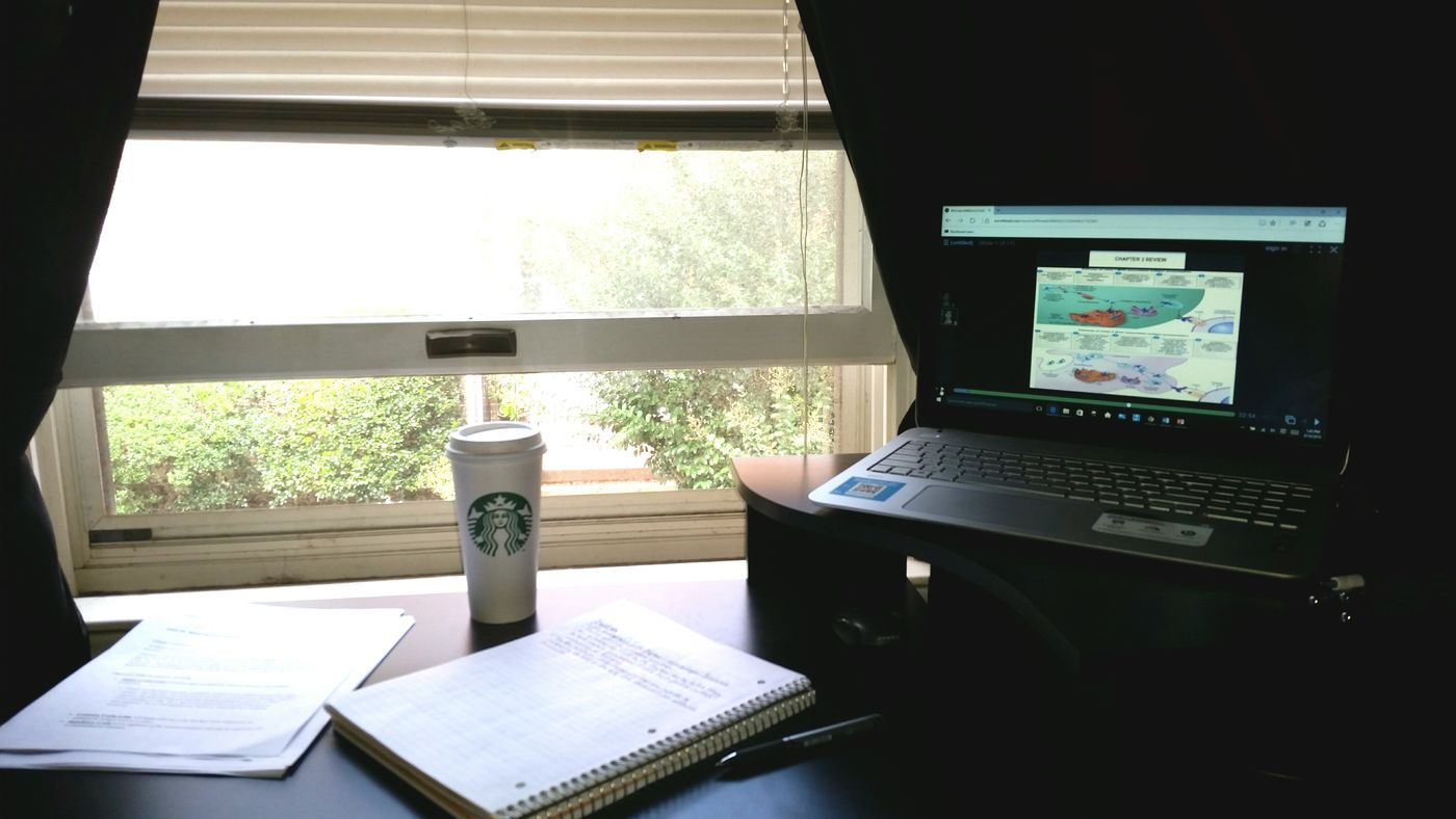 Another day, another chapter! Studying Immunology and Drinking Coffee !