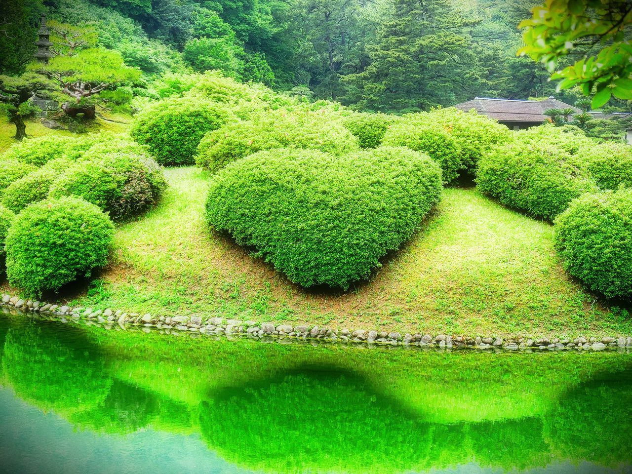 ❤ Hi! Hello World Taking Photos Day No People Green Color Plant Outdoors Beauty In Nature Water Nature Holiday Destination Japanese Garden Japan Photography Reflection Check This Out Enjoying Life Japan 香川 高松 栗林公園