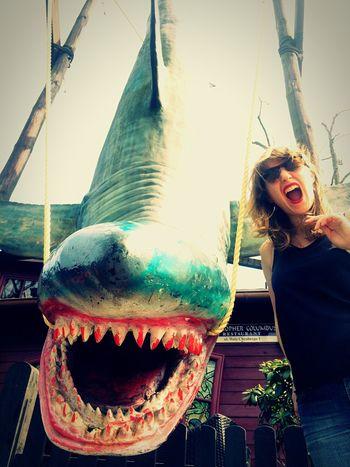 Shark BLOODY Roar