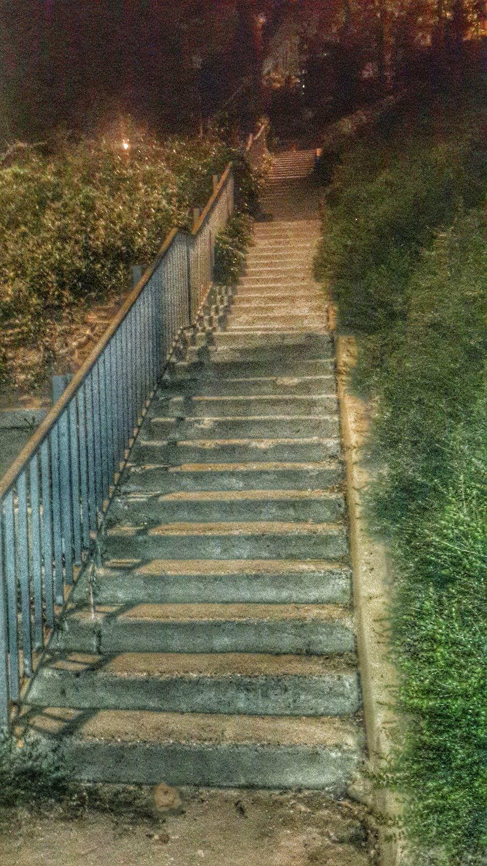 👣👣 Stairs Come Out  Tiring Nightphotography Benimkadrajim Night Eyemmarket Anıyakala Eye4photography  Nature Photography EyeEm Gallery Eyem Best Shots Nature_collection EyeEm Nature Lover EyeEm Best Shots EyeEmBestPics Eyemphotography Eyem Eyemphotos