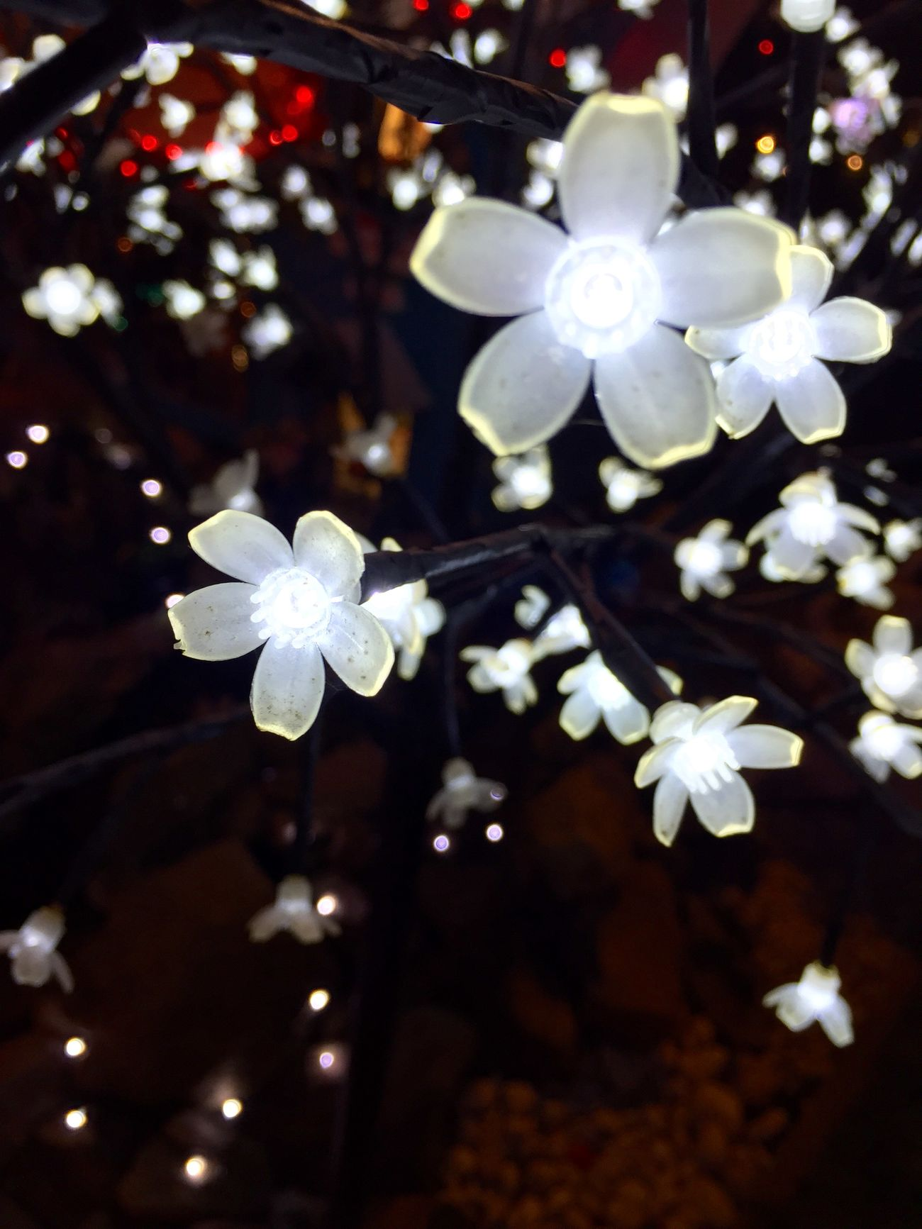 Christmas Around The World Fleurs Lighting Lumière Arbre Decoration Christmas Decorations Phoneography Iphonephotography Noël Village Père Noël Allonnes Family Vivement Noel Village De Noel
