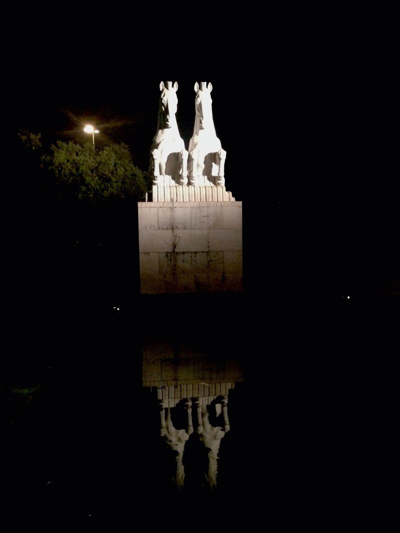 Night Statue Horses Reflection Park Lake