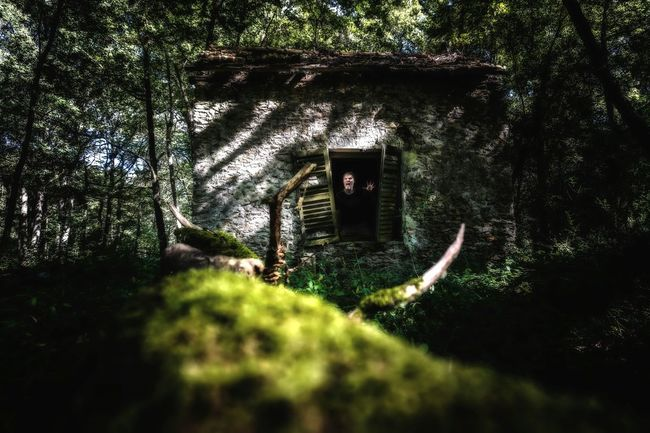 Home Is Where The Art Is and is my home ! 😵 Photography Is My Escape From Reality! Forest Mystery Mysterious Abandoned Places Abandoned Buildings