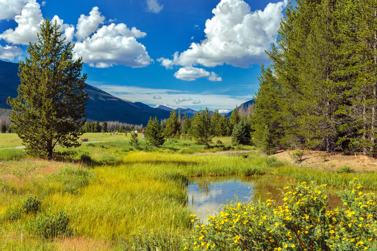 Beautiful stock photos of kojote, Beauty In Nature, Blue, Day, Estes Park