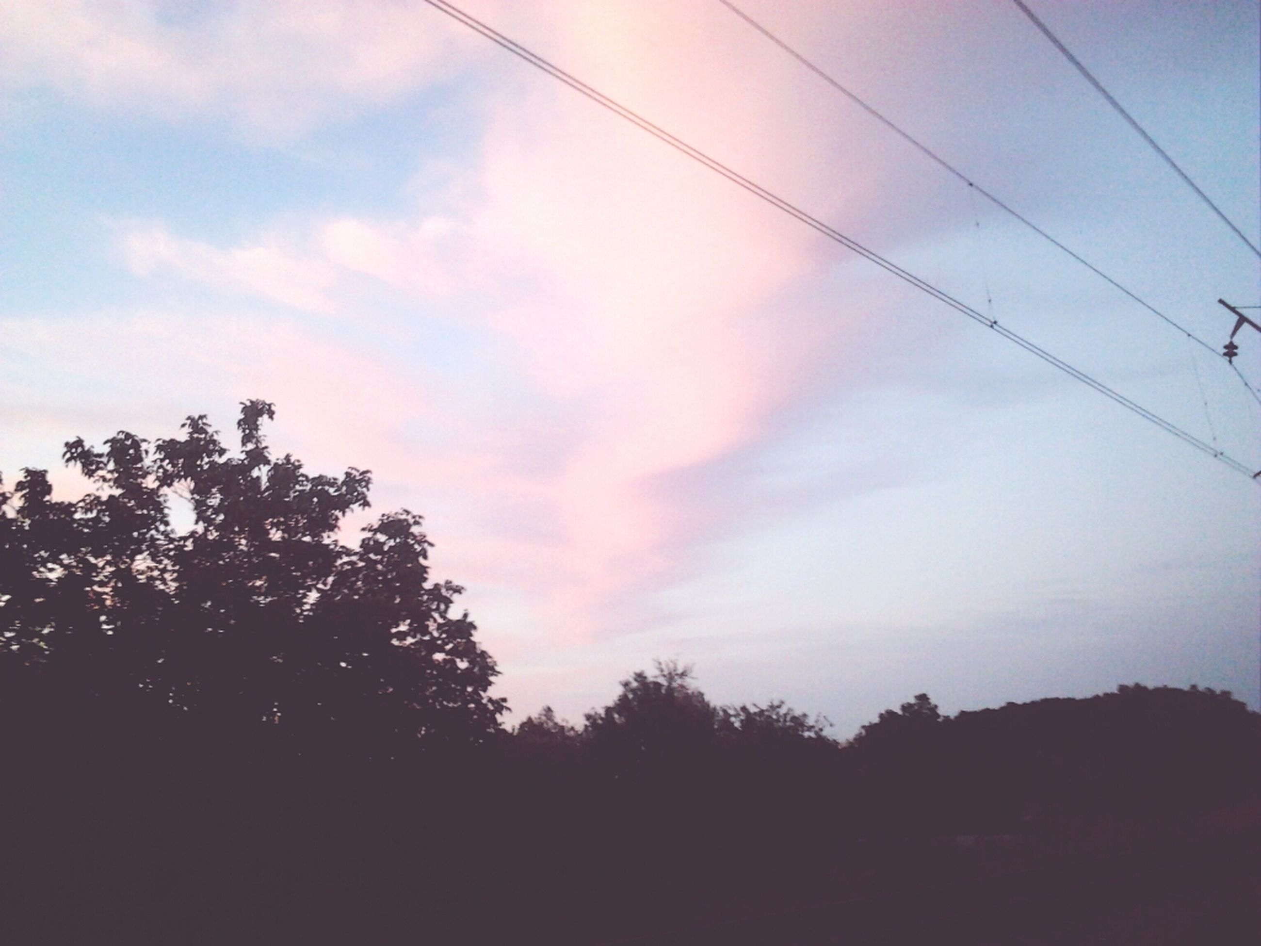 tree, sky, silhouette, tranquility, tranquil scene, cloud - sky, low angle view, scenics, beauty in nature, power line, nature, cloud, sunset, electricity pylon, landscape, cloudy, dusk, outdoors, no people, growth