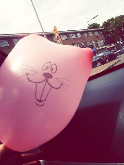 House Of Balloons XO