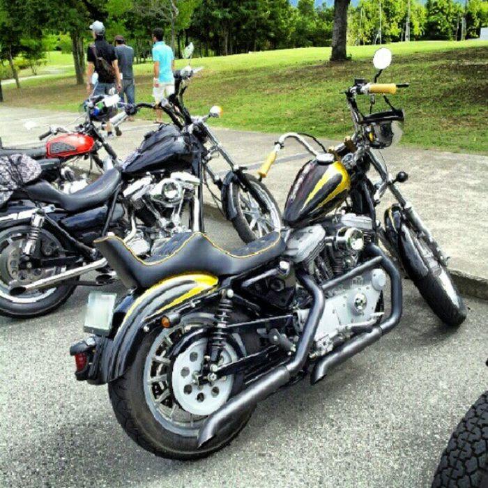 super weekend parking Harleydavidson Sportser Chopper Bobber FXR