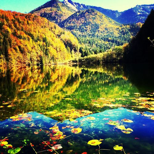 First Eyeem Photo Water Reflections Nature Autumn Colors