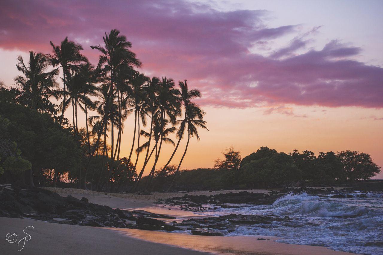 Mahaiula Bay, Big Island, Hawaii. 🌊🌴 Big Island Mahaiula Beach Big Island Hawaii Pacific Ocean Water Sky Nature Sea Sunset Palm Tree Scenics Beach Tranquil Scene No People Shore Outdoors Tranquility Eyem Best Shots Cloud - Sky Horizon Over Water Day EyeEmNewHere Eyemphotography First Eyeem Photo