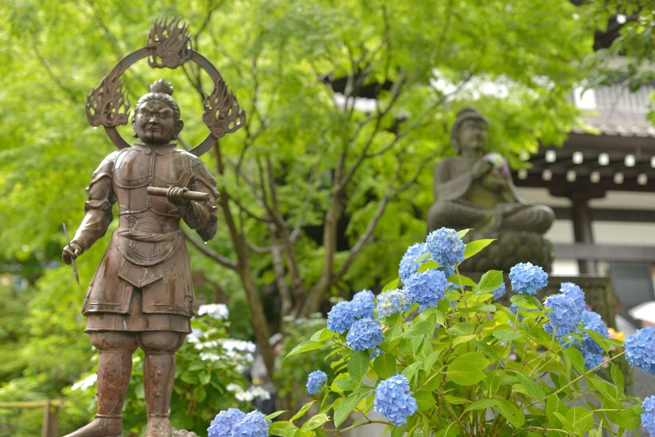 Statue By Flowers Against Trees