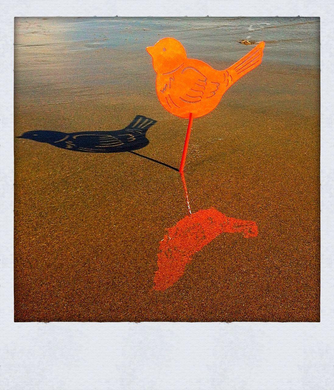Metal Bird Stack To Sand On Beach