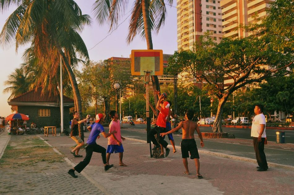 Beautiful stock photos of basketball, Basketball, Basketball Hoop, Building Exterior, Casual