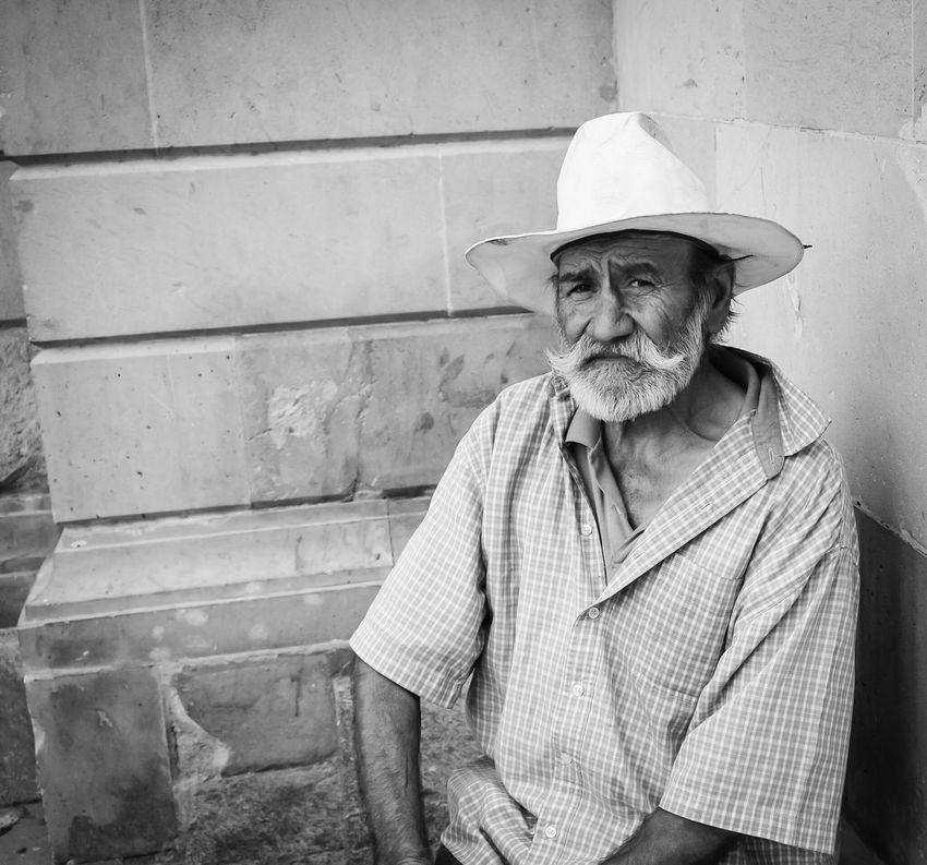 Viejo Viejito Rostrochihuahua