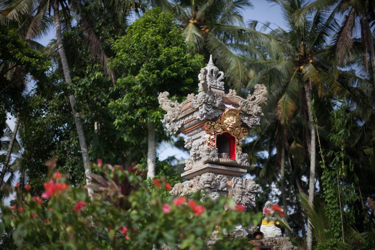 Beautiful stock photos of garden, Carving, Day, Garden, Lantern