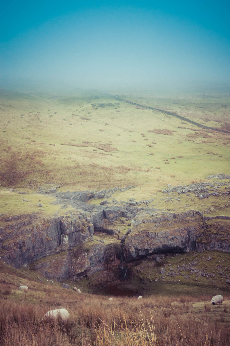 Beauty In Nature Day Landscape Mountain Nature No People Outdoors Patchwork Landscape Pen-y-ghent Scenics Sky Three Peaks Tranquil Scene Tranquility Yorkshire Dales Yorkshire Three Peaks