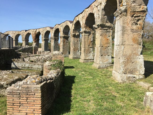 Ancient Ancient Civilization Ancient Architecture Ancient Ruins Ancient Building Ancient Culture Ancient Beauty Amphitheatre Ruins Ruins_photography Ruins Architecture Roman Ruins Ferentium Viterbo Vitorchiano Roman Architecture Roman Roman Bath These amazing ruins are not even a tourist attraction as they are on a private property. We got so so lucky to get to look at them. Italy Italy❤️ Italia Italy🇮🇹