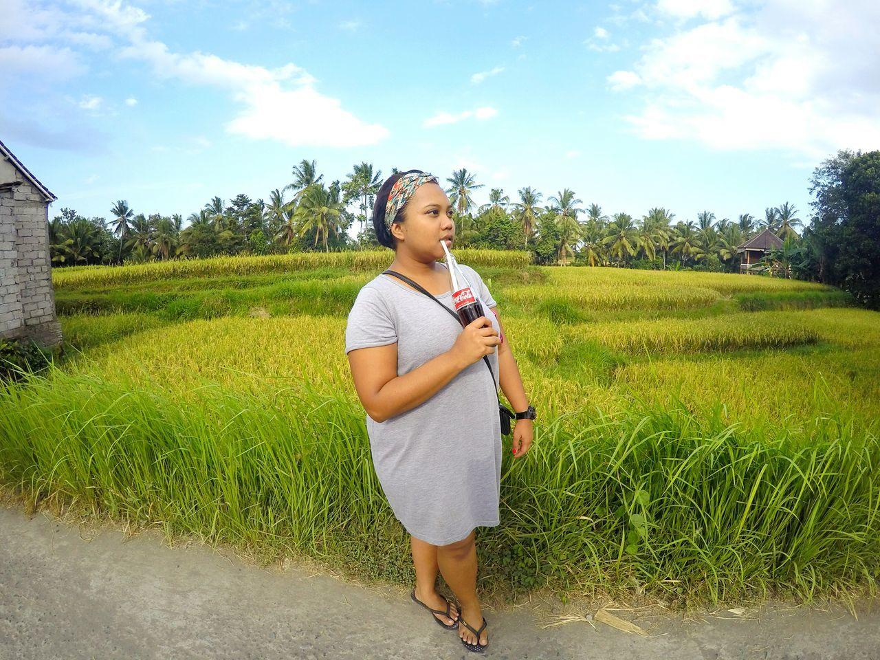 INDONESIA Bali Ubud Padifield