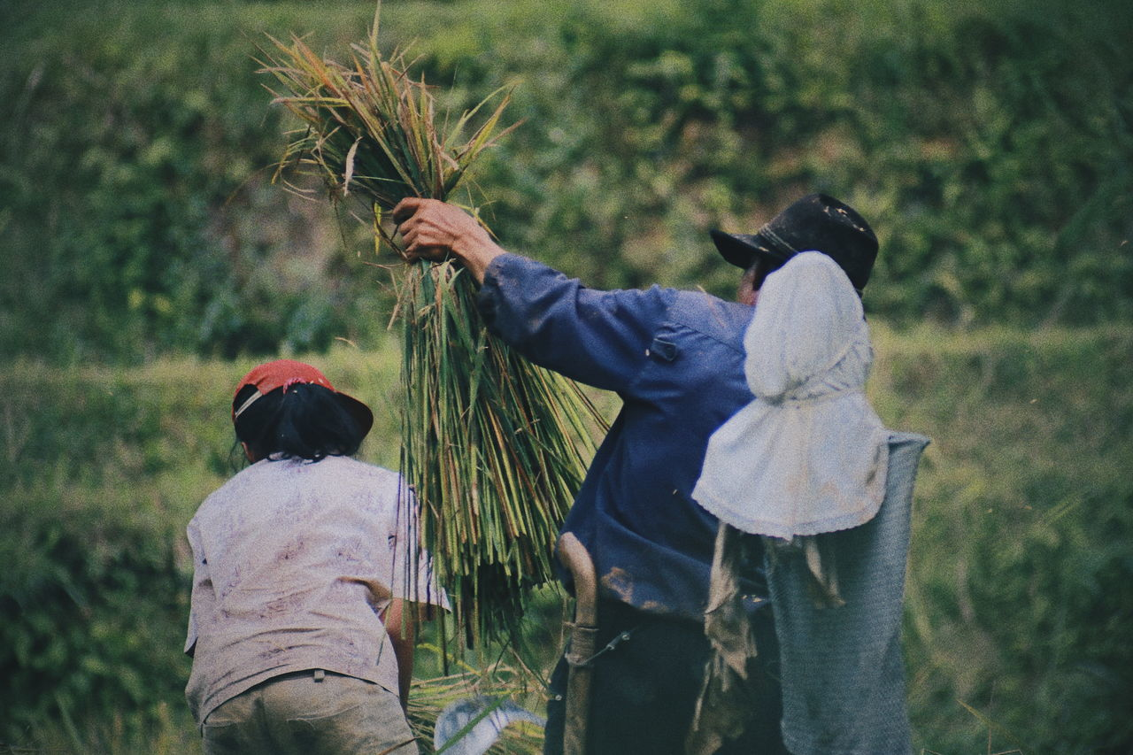Farmer Real People Outdoors Nature Field Day Growth Lifestyles Women Two People Leisure Activity Togetherness Men Plant Warm Clothing Adult People INDONESIA Adults Only Nature The Great Outdoors - 2017 EyeEm Awards Traditional Activity Humaninterestphotography Humaninterest Humaninterestindonesia