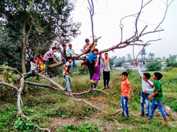 Childhood Child Playground Casual Clothing Girls Fun Boys Tree Togetherness Outdoors People Day Happiness Sky Climbing Nature Children Only Naturephotography EyeEmNewHere Kids Are Awesome India