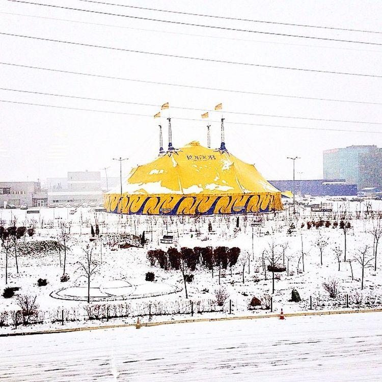 Киев Kievblog Kyiv Ukraine Ukrainianblog Kiev Insta_kiev