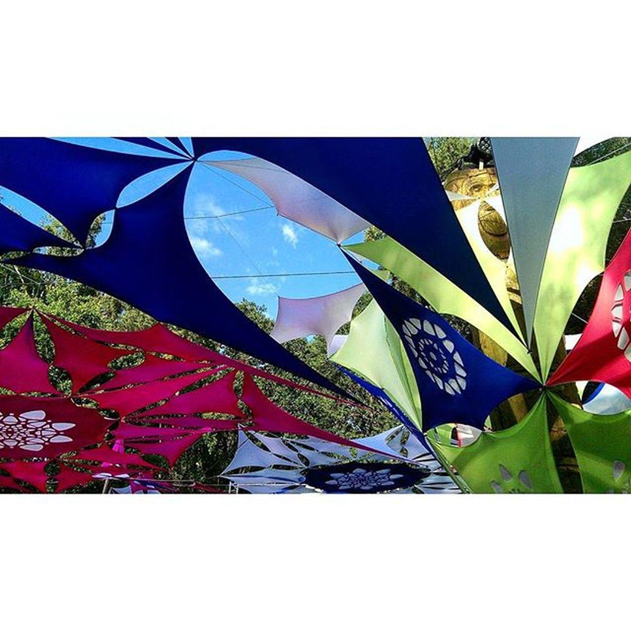 Orangesun 💃 OA Orangesunfestival Goodvibes Festivalseason Schnappsundliebe Schönesambiente Schöneswetter Schönedeko Lauterkinder 😱 Undwirsagten Dasbändchenpasst Trotzdemwarsgeil Gernewieder Kleinaberfein