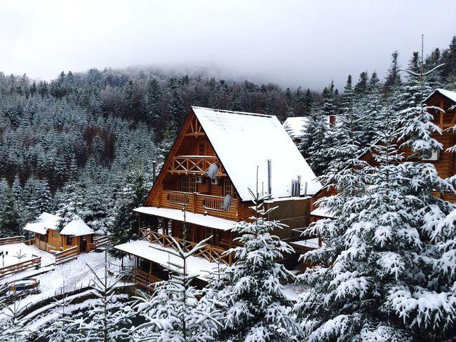 Carpathians First Eyeem Photo