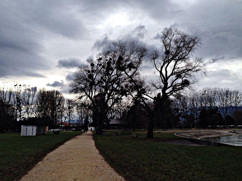 Retour Yverdon-les-Bains Landscape