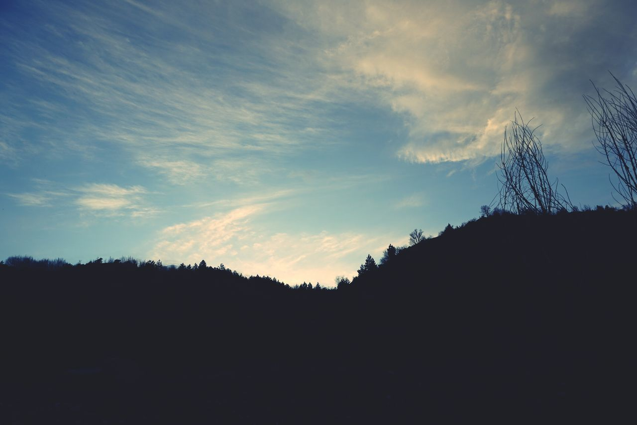silhouette, sky, nature, sunset, tranquility, scenics, beauty in nature, no people, tree, landscape, outdoors, day