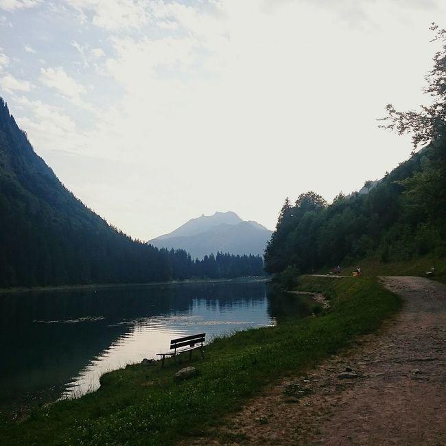 Swimming Biking Portdusoleil Travelling Chilling