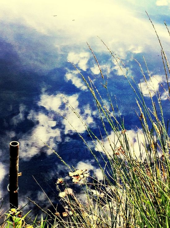Cracious Pond Chobham Surrey G. B. Reflections Sky And Clouds Eye4photography  AMPt_community