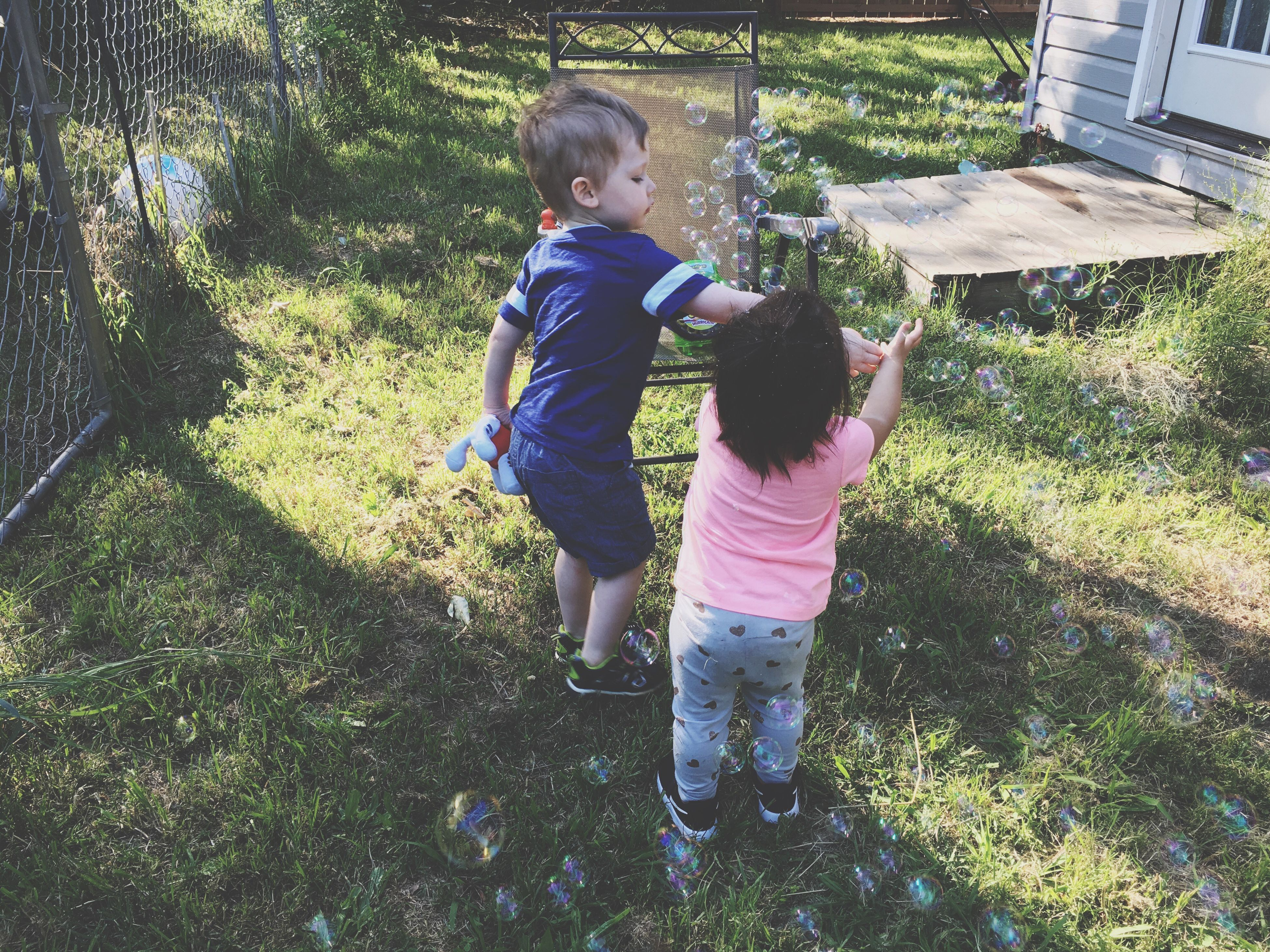 childhood, two people, full length, grass, day, real people, togetherness, casual clothing, leisure activity, outdoors, boys, sunlight, tree, nature, animal themes, people