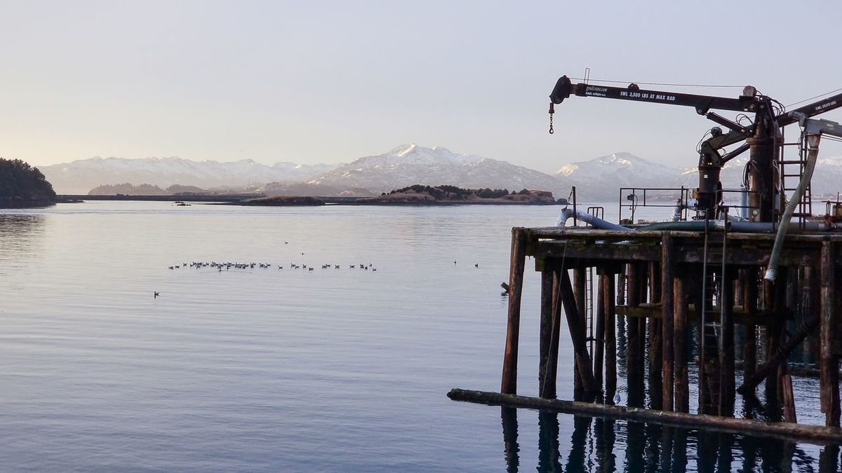 Mountain Water Sea Cold Temperature Nature Mountain Range Outdoors Fishing Sky Day Beauty In Nature Clear Sky Winter Bird Snow Photography Kodiak Alaska Voyageur Country Imaging Sunlight Reflection Landscape Sun Commercial Dock Cannery