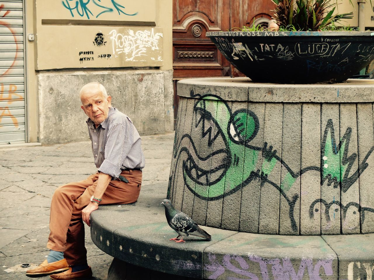 Art Art And Craft Bird Birds Communication Creativity Cultures Dragon Graffiti Grandpa Human Representation Italia People People Watching Peoplephotography Street Art Text Urban UrbanART Wall