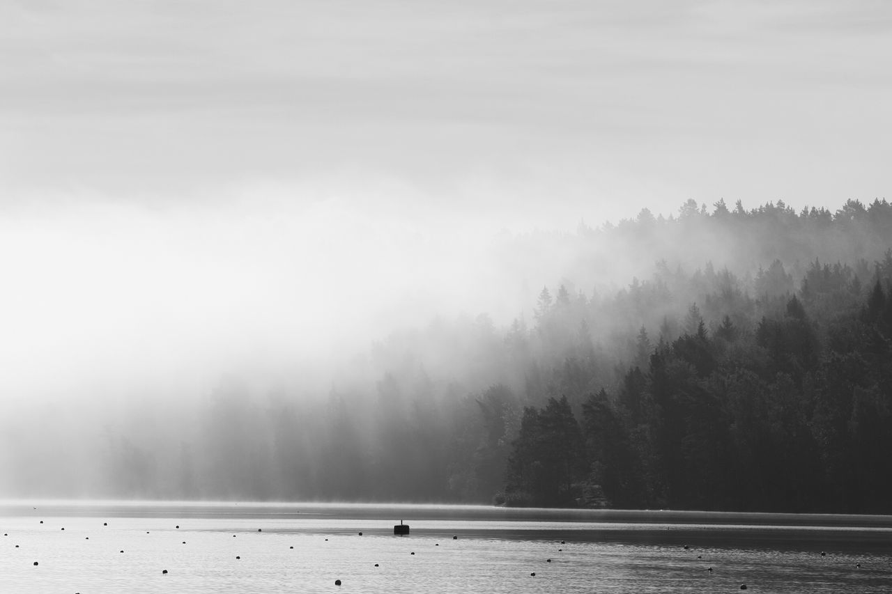 Shades Of Grey Fog Malephotographerofthemonth Light And Shadow EyeEm Best Shots Bnw Landscape