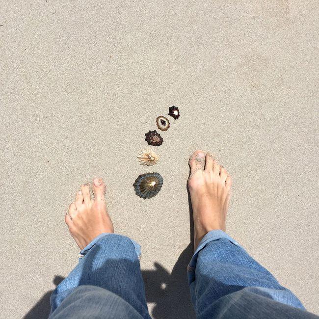 Beach Life Sandy Feet Vacation