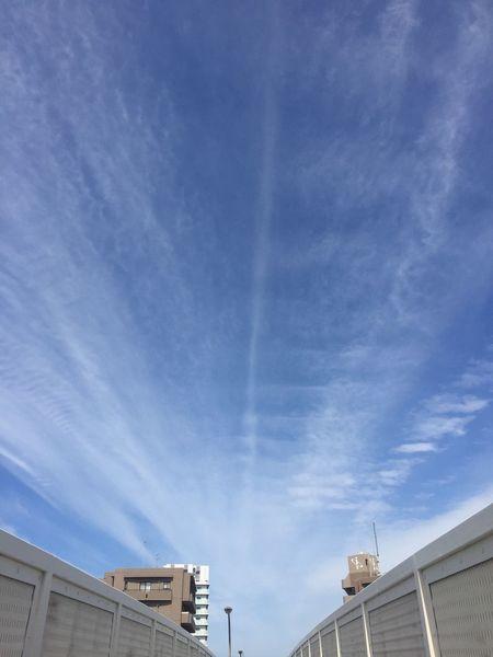 Instagramに上げたやつの魚眼レンズじゃやいバージョン 青空 Blue Sky 空 Sky 雲 Clouds