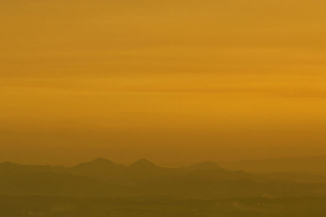 Golden hours 43 Golden Moments Nature EyeEm Best Shots - Nature Sunset Landscape