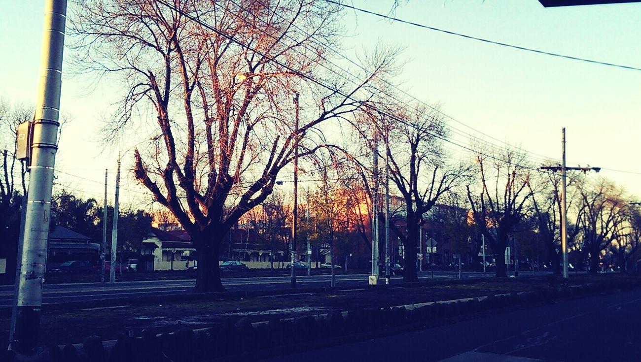frosty Public Transportation Htcone Suburbia