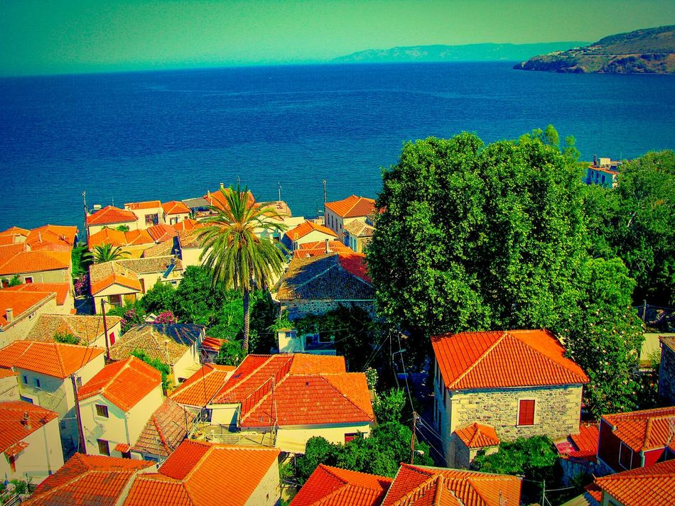 Village Village View Seaside Village Roofs Red Roofs Houses Greek Village Petra Lesvos Island Greek Islands View From The Top View From Above Viewpoint Viewpoints Seascape Villagescape Shades Of Blue Shades Of Red Shades Of Red&blue The Great Outdoors - 2016 EyeEm Awards The Essence Of Summer Trees Trees And Village Village And Sea