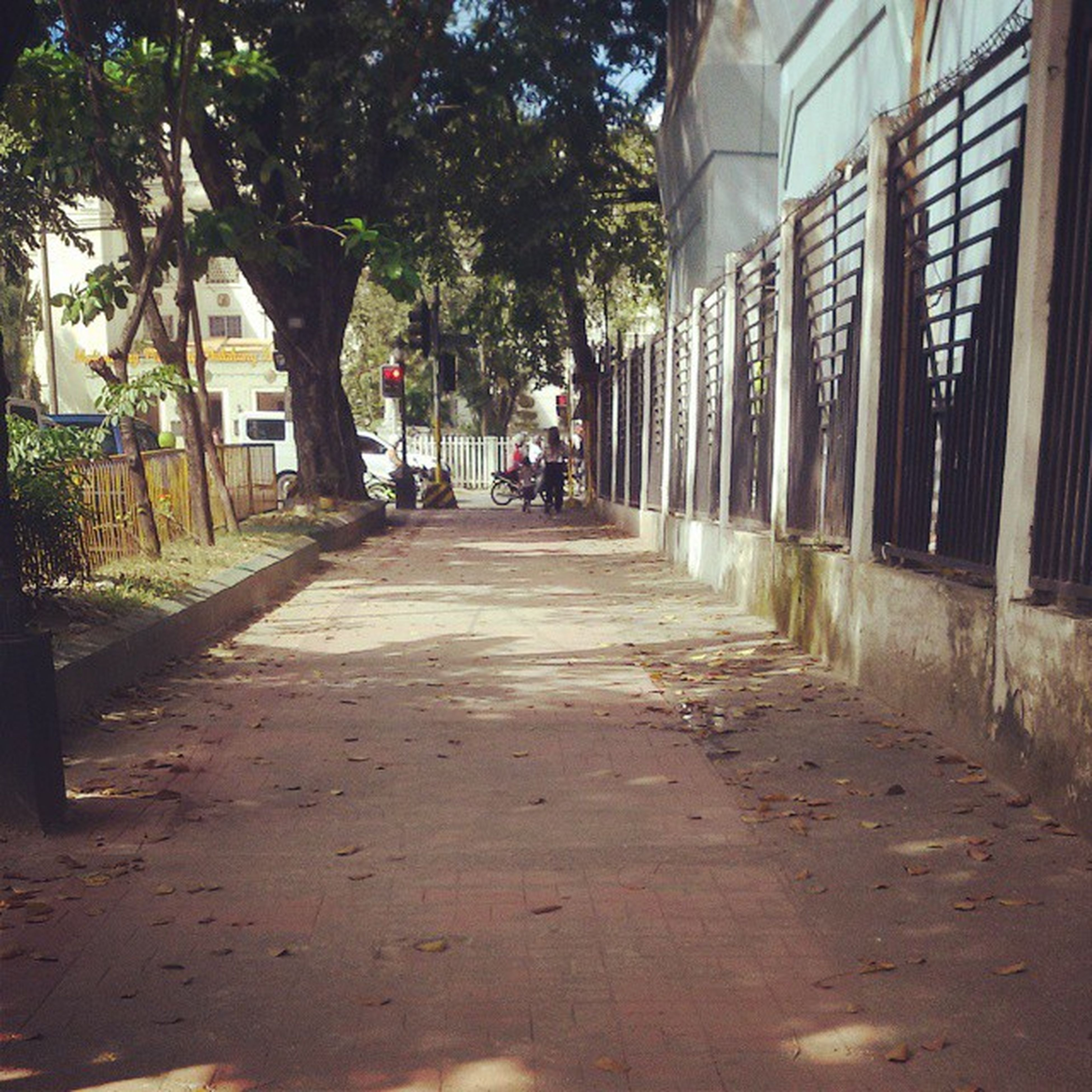 architecture, built structure, building exterior, the way forward, tree, street, transportation, incidental people, city, diminishing perspective, alley, sunlight, building, day, vanishing point, house, narrow, car, footpath, residential building