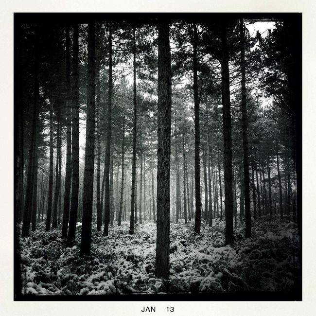 Hipstamatic