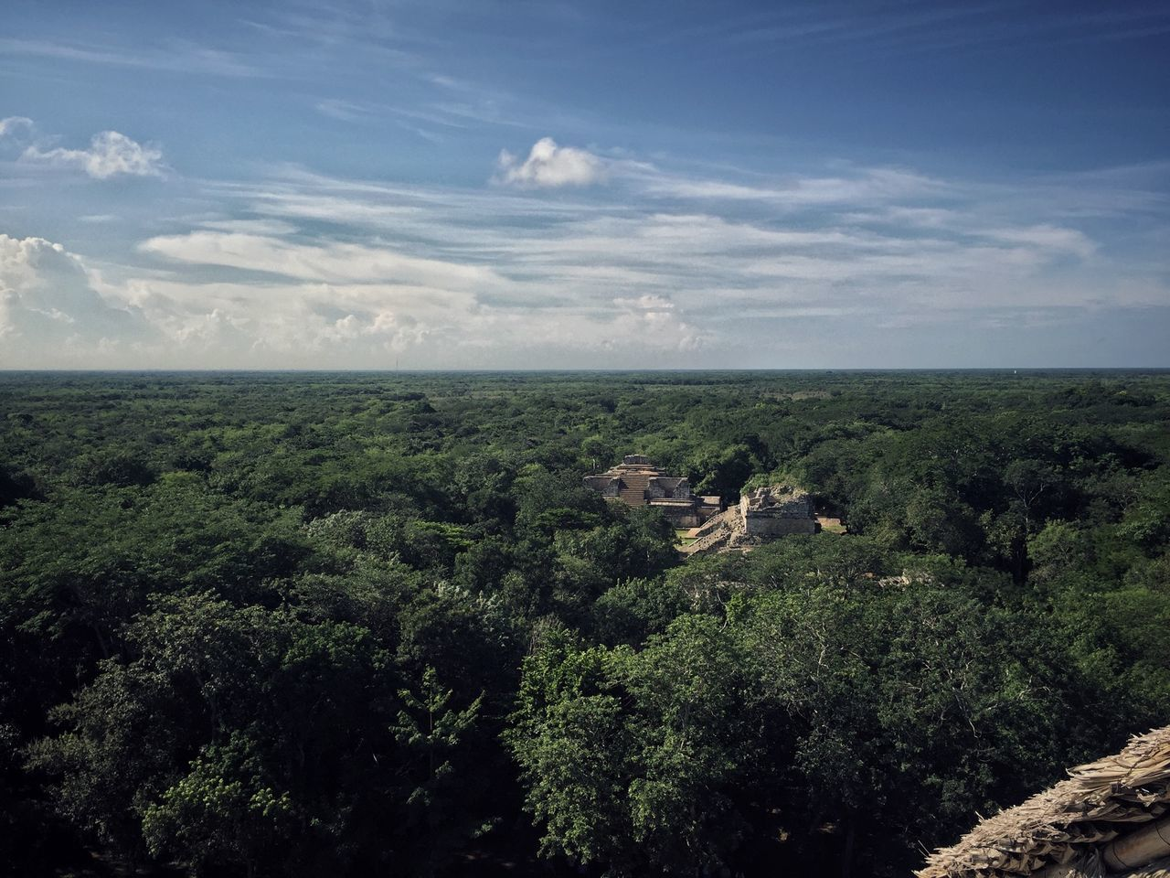 Abondoned Abondoned Buildings Above Beauty In Nature Forest Horizon Over Water Jungle Landscape Maya Mayan Ruins Nature No People Ruin Scenics Sky Tree Tree Trees Yucatan Mexico Yúcatan Miles Away