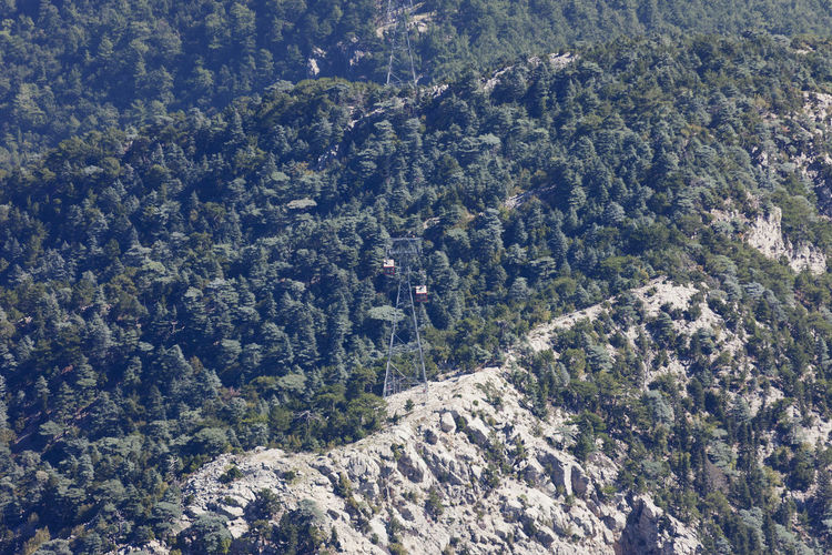Tahtali Mountain with Overhead Cable Car - Tahtali Dagi, Antalya Province, Turkey Antalya Cable Car Elevator Hanging Public Transportation Pylon Ropeway Tahtali Tourist Attraction  Transportation Turkey Cable Cableway Cliff Forest High Angle View Mountain Mountain Range Mountains Overhead Cable Car Taurus Mountains Technology Teleferik Tourism Woods