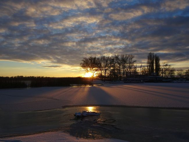 Tree Sunset Cloud - Sky Sky Tranquility Nature No People Silhouette Beauty In Nature Outdoors Water Scenics Day River Bank  River Walk Sundown Landscape Sundown Snow❄ Winter Sky Winter Landscape Wintertime Sunset  Winter Sun