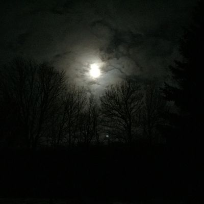Cold winters night Moon Night Winter Cool Cold