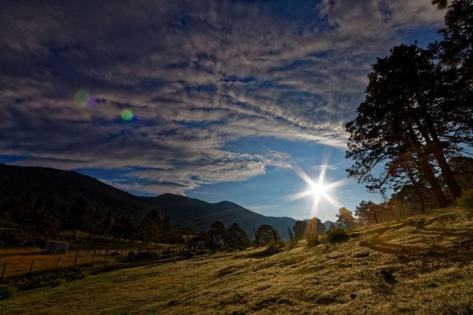 Tarillal Beauty In Nature Bright Counterlight Landscape Lens Flare Majestic Mountain Mountain Range Scenics Sun Sunbeam Tranquil Scene Tranquility Dawn Scenics Finding New Frontiers