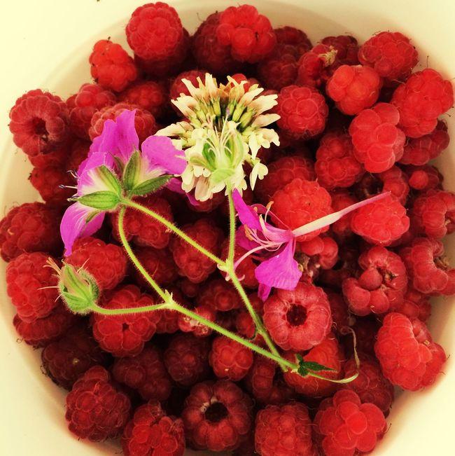 Raspberries Summer Berries Soaking Up The Sun